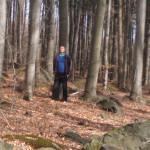 zdjęcia medytacji 2014